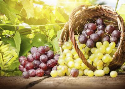 Helle und Dunkle Weintrauben im Korb